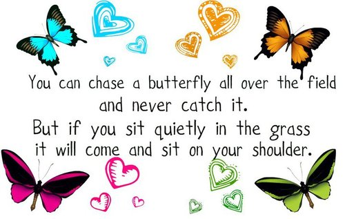 you-can-chase-a-butterfly-all-over-the-field-and-never-catch-it